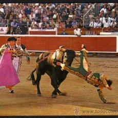 Tauromaquia: POSTAL: CORRIDA DE TOROS T.5 - COGIDA - MANUEL BENITEZ EL CORDOBES. Lote 29608576