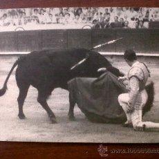 Tauromaquia: FOTOGRAFIA TORERO BERNADO-13X18-FOTOGRAFO GONSANHI. Lote 30022277
