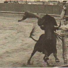 Tauromaquia: TOROS. TORERO: MARIO CABRE. 9X14 CM. CA. 1960. Lote 31618637