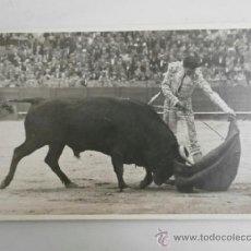 Tauromaquia: FOTO TAUROMAQUIA ORIGINAL SEVILLA CORRIDA DE FERIA PARRITA TAUROMAQUIA-055. Lote 37138838