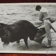 Tauromaquia: FOTOGRAFIA ORIGINAL DE MANOLETE, MANUEL RODRIGUEZ , TOROS , REVERSO CON SELLO FOTO ORTIZ, MIDE 1. Lote 41586427