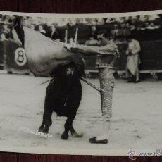Tauromaquia: FOTOGRAFIA ORIGINAL DE MANOLETE, MANUEL RODRIGUEZ , TOROS , REVERSO CON SELLO FOTO BALDOMERO. Lote 41586497