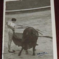 Tauromaquia: FOTOGRAFIA ORIGINAL DE MANOLETE, MANUEL RODRIGUEZ , TOROS , REVERSO CON SELLO DE FOTO CANO, MIDE 11,. Lote 41631976