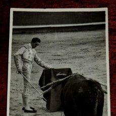 Tauromaquia: FOTOGRAFIA DE MANOLETE , ESTA FOTO FUE HECHA POR EL FOTOGRAFO CANO, EN LA PLAZA DE LINARES (JAEN) EN. Lote 43543741