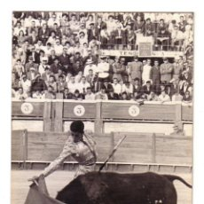 Tauromaquia: PAQUIRRI TOREANDO.FOTOGRAFIA GONZALEZ.CÁDIZ.29 DE JUNIO DE 1964.FOTOGRAFIA TAMAÑO: 18 X 12 CTMS.. Lote 48414960