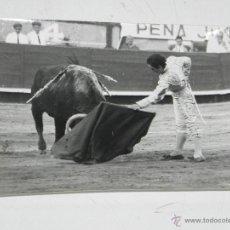 Tauromaquia: FOTOGRAFIA DE PACO CAMINO, TOROS, TAUROMAQUIA, FOTO PACO MARI, SAN SEBASTIAN, AÑO 1967, MIDE 12,5 X. Lote 50346559