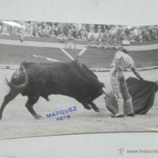 Tauromaquia: FOTOGRAFIA DEL TORERO PACO PALLARES, FOTO VICTORIANO MARQUEZ, VALENCIA, AÑO 1965, MIDE 18 X 13 CMS.. Lote 50384850