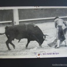 Tauromachie: POSTAL FOTOGRÁFICA TOROS. M. BIENVENIDA. RODERO FOTO. . Lote 55098386