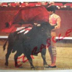 Tauromaquia: TAUROMAQUIA DE BOLSILLO- ESTATUARIOS - Nº 112-- PEDRO DOMECQ.. Lote 55374325