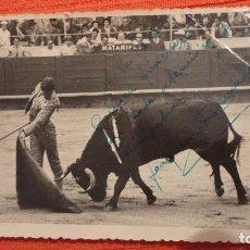 Tauromaquia: ANTIGUA FOTOGRAFIA.TORERO JOAQUIN BERNARDO BERTOMEU.DEDICADA.FIRMADA.FOTO MATEO.1954. Lote 62708808