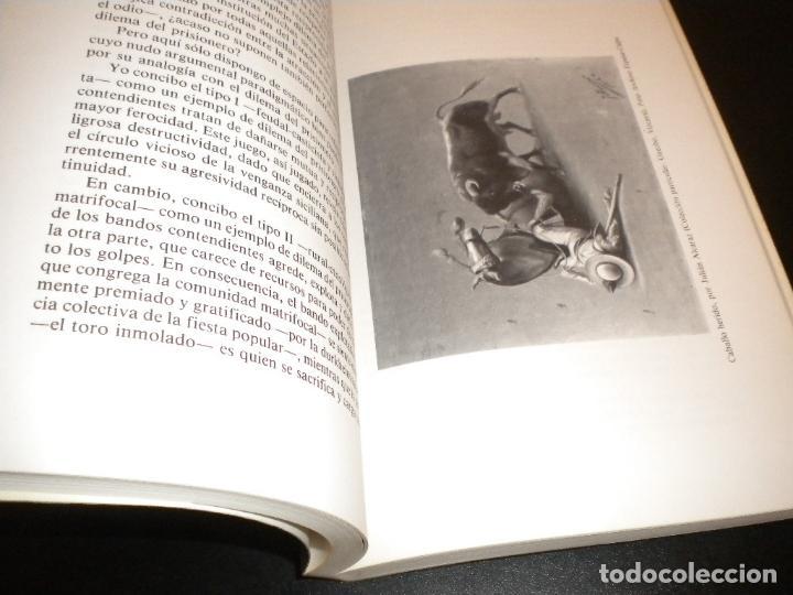 Tauromaquia: funcion de toros / enrique gil calvo - Foto 3 - 66225654