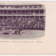 Tauromaquia: CORRIDA DE TOROS: SE LEVANTA EL TORO MUERTO AL TORIL. N.D. FOT. SIN DIVIDIR. NO CIRCULADA (C.1900). Lote 70477445