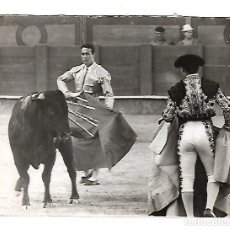 Tauromaquia: FOTOGRAFIA. TOROS. CURRO ROMERO EN RETAGUARDIA. FOTO GUIDET. 15 X 12CM. Lote 75679091