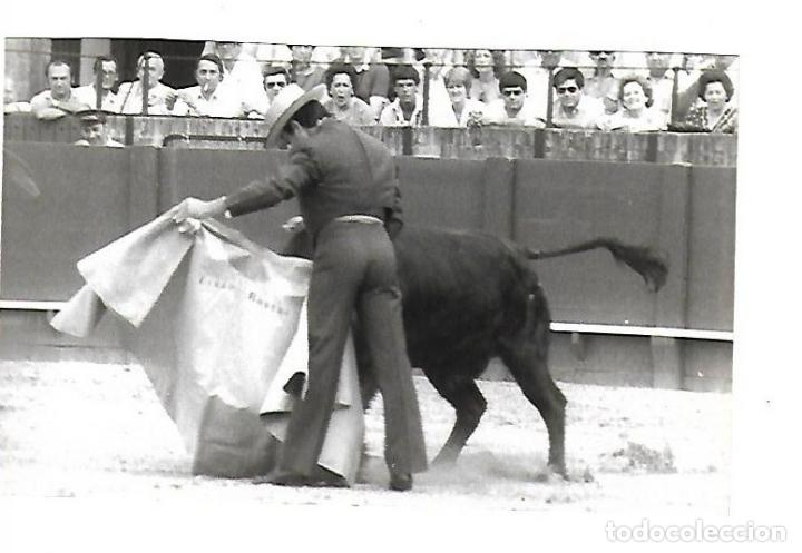 FOTOGRAFIA. TOROS. CURRO ROMERO TOREANDO. FOTO ARJONA. 18 X 12CM. (Coleccionismo - Tauromaquia)