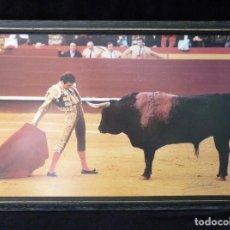 Tauromaquia: TORERO ENRIQUE PONCE. FOTOGRAFÍA ENMARCADA Y FIRMADA POR CONRADO ABELLÁN. 50X34 CM., PEÑA TAURINA. A. Lote 90376676
