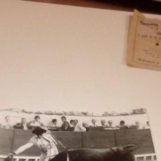 Tauromaquia: CAJ-191099 FOTO ANTIGUA TOROS TORERO MEDIDAS 25X18. Lote 104390635