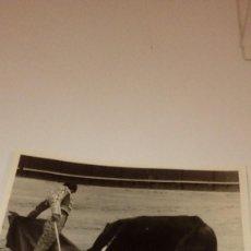 Tauromaquia: CAJ-191099 FOTO ANTIGUA TOROS TORERO PASE. Lote 104390815