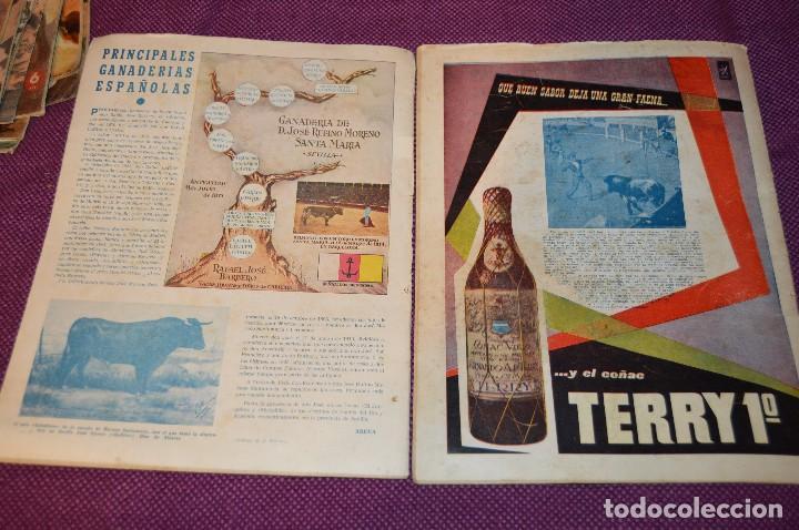 Tauromaquia: Años 50 - 17 REVISTAS TAURINAS - 17 EJEMPLARES DE LA REVISTA EL RUEDO - HAZME UNA OFERTA - VINTAGE - Foto 3 - 106959791