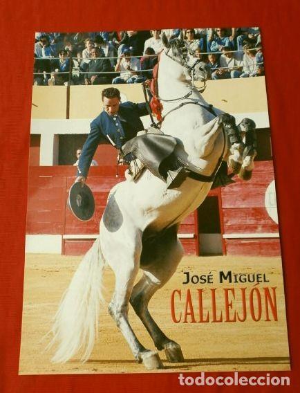 FOTO TORERO REJONEADOR - JOSE MIGUEL CALLEJON - 17 X 24 CM - TOROS REJONEO (Coleccionismo - Tauromaquia)