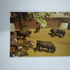 Tauromaquia: POSTAL SEMANA GRANDE DE BILBAO. FERIA DE TOROS. AGOSTO 1981. GRAN HOTEL ERCILLA. TDKP13. Lote 141930090