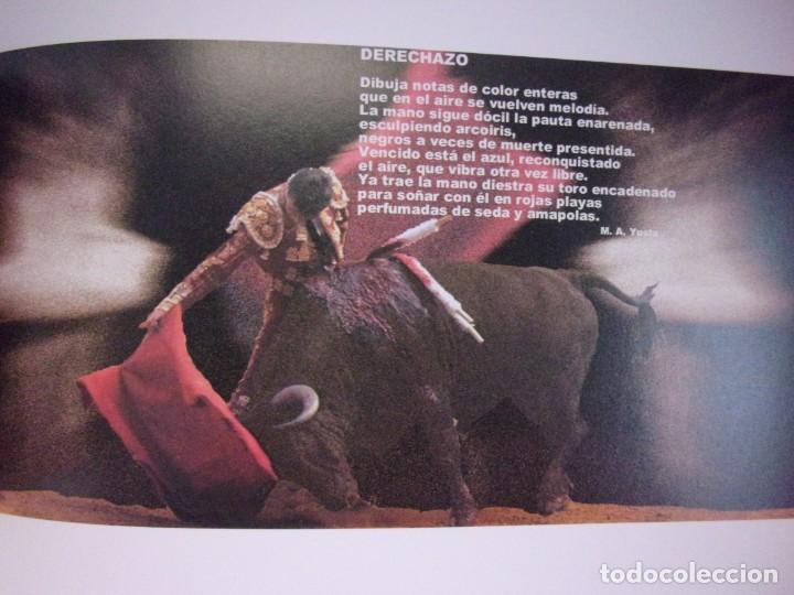 Tauromaquia: TAUROMAQUIA. Luces y sombras de la fiesta / 2000. Gobierno de Aragón - Foto 3 - 149963682
