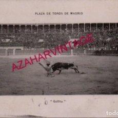 Tauromaquia: ANTIGUA POSTAL, PLAZA DE TOROS DE MADRID, JOSELITO EL GALLO, CIRCULADA. Lote 154626934