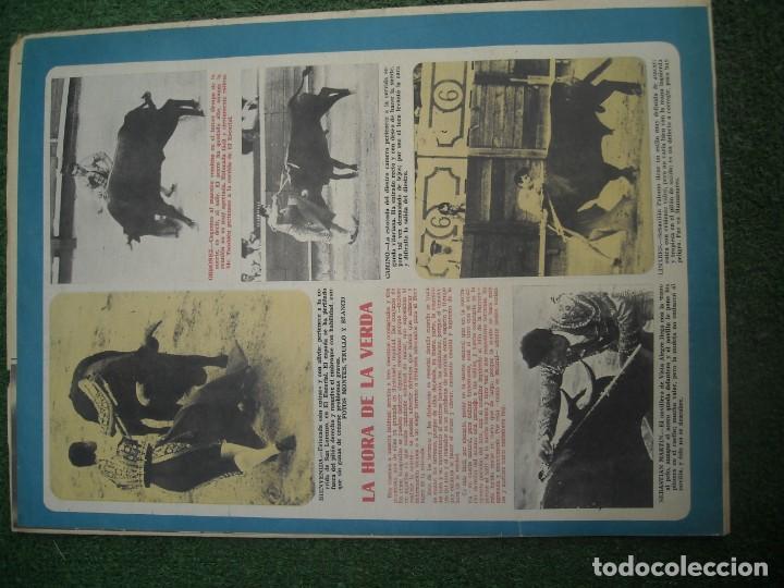 Tauromaquia: EL RUEDO SEMANARIO GRÁFICO DE LOS TOROS 73 EJEMPLARES AÑO 1962 1966 1967 1968 1970 1971 1972 1973 - Foto 6 - 167847784