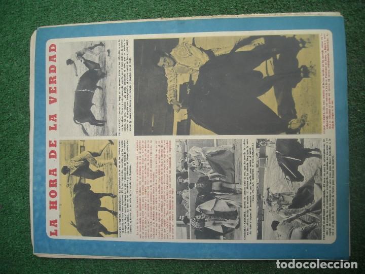 Tauromaquia: EL RUEDO SEMANARIO GRÁFICO DE LOS TOROS 73 EJEMPLARES AÑO 1962 1966 1967 1968 1970 1971 1972 1973 - Foto 8 - 167847784