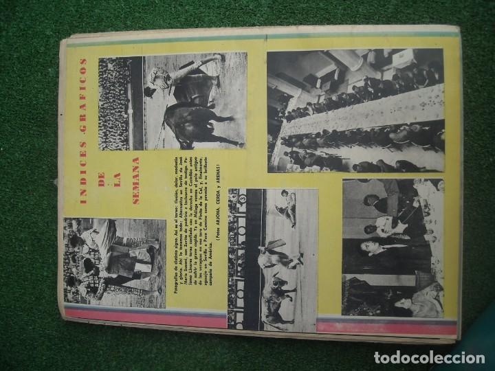 Tauromaquia: EL RUEDO SEMANARIO GRÁFICO DE LOS TOROS 73 EJEMPLARES AÑO 1962 1966 1967 1968 1970 1971 1972 1973 - Foto 13 - 167847784