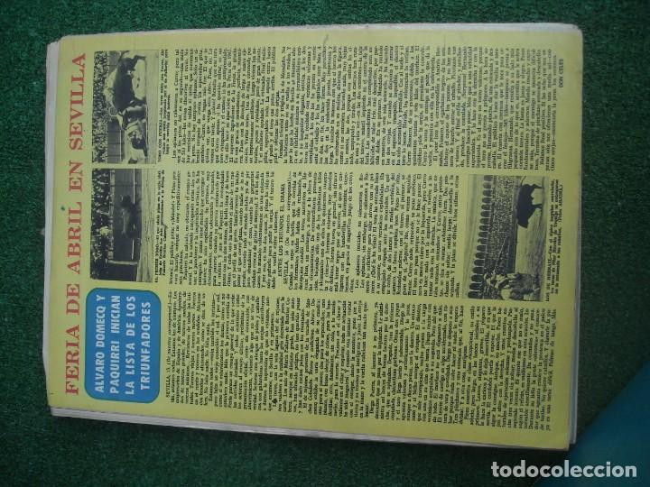 Tauromaquia: EL RUEDO SEMANARIO GRÁFICO DE LOS TOROS 73 EJEMPLARES AÑO 1962 1966 1967 1968 1970 1971 1972 1973 - Foto 15 - 167847784