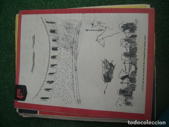 Tauromaquia: EL RUEDO SEMANARIO GRÁFICO DE LOS TOROS 73 EJEMPLARES AÑO 1962 1966 1967 1968 1970 1971 1972 1973 - Foto 27 - 167847784