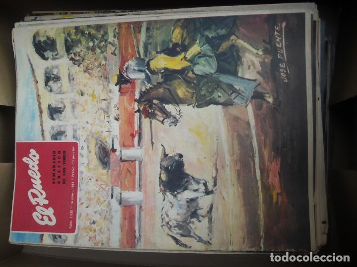 Tauromaquia: EL RUEDO SEMANARIO GRÁFICO DE LOS TOROS 73 EJEMPLARES AÑO 1962 1966 1967 1968 1970 1971 1972 1973 - Foto 28 - 167847784