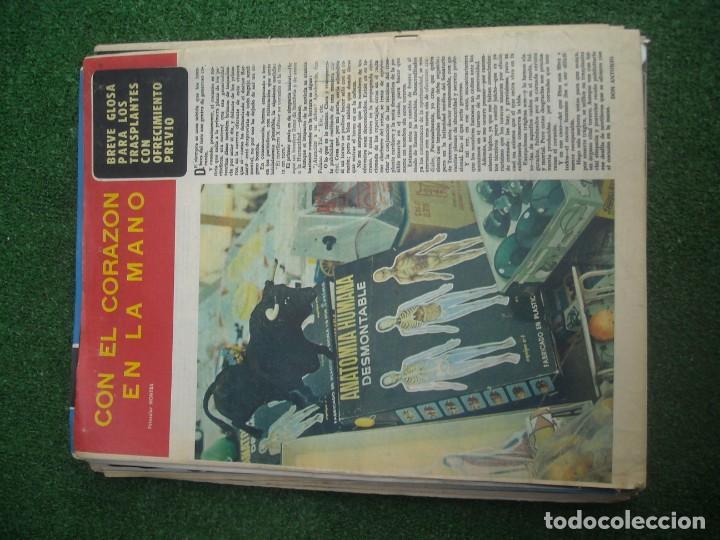 Tauromaquia: EL RUEDO SEMANARIO GRÁFICO DE LOS TOROS 73 EJEMPLARES AÑO 1962 1966 1967 1968 1970 1971 1972 1973 - Foto 35 - 167847784