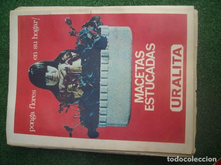 Tauromaquia: EL RUEDO SEMANARIO GRÁFICO DE LOS TOROS 73 EJEMPLARES AÑO 1962 1966 1967 1968 1970 1971 1972 1973 - Foto 48 - 167847784