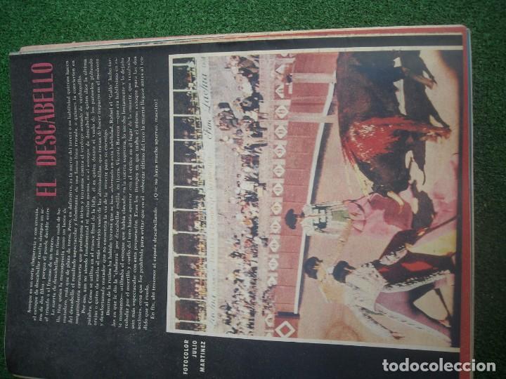Tauromaquia: EL RUEDO SEMANARIO GRÁFICO DE LOS TOROS 73 EJEMPLARES AÑO 1962 1966 1967 1968 1970 1971 1972 1973 - Foto 67 - 167847784
