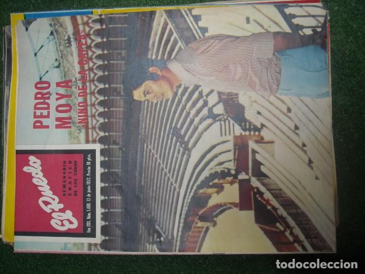 Tauromaquia: EL RUEDO SEMANARIO GRÁFICO DE LOS TOROS 73 EJEMPLARES AÑO 1962 1966 1967 1968 1970 1971 1972 1973 - Foto 86 - 167847784