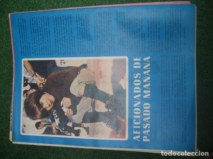 Tauromaquia: EL RUEDO SEMANARIO GRÁFICO DE LOS TOROS 73 EJEMPLARES AÑO 1962 1966 1967 1968 1970 1971 1972 1973 - Foto 89 - 167847784