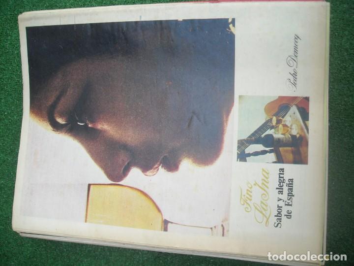 Tauromaquia: EL RUEDO SEMANARIO GRÁFICO DE LOS TOROS 73 EJEMPLARES AÑO 1962 1966 1967 1968 1970 1971 1972 1973 - Foto 99 - 167847784