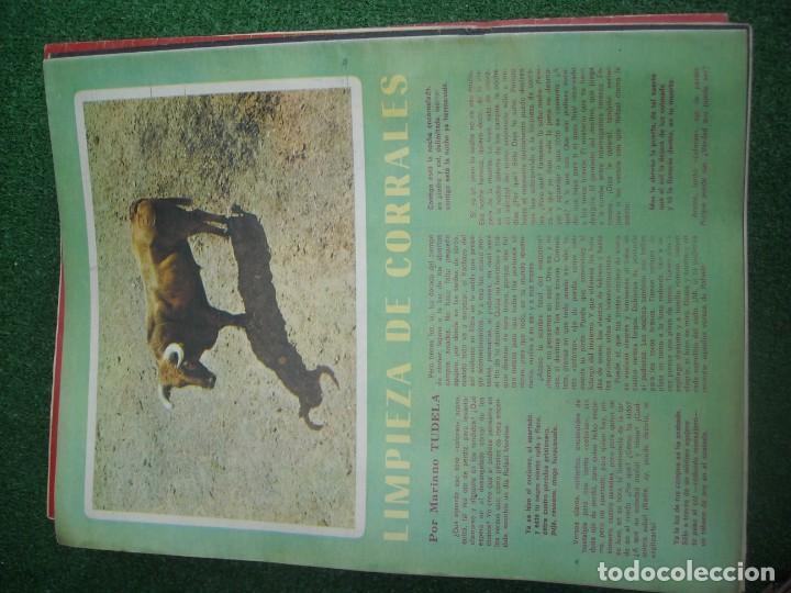 Tauromaquia: EL RUEDO SEMANARIO GRÁFICO DE LOS TOROS 73 EJEMPLARES AÑO 1962 1966 1967 1968 1970 1971 1972 1973 - Foto 107 - 167847784