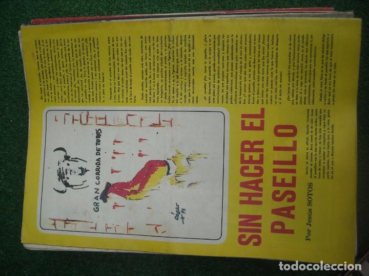 Tauromaquia: EL RUEDO SEMANARIO GRÁFICO DE LOS TOROS 73 EJEMPLARES AÑO 1962 1966 1967 1968 1970 1971 1972 1973 - Foto 113 - 167847784
