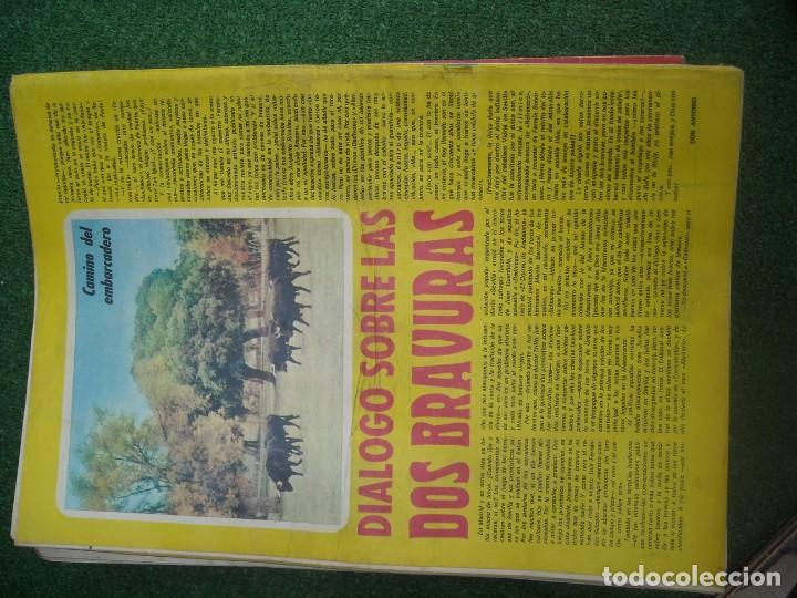 Tauromaquia: EL RUEDO SEMANARIO GRÁFICO DE LOS TOROS 73 EJEMPLARES AÑO 1962 1966 1967 1968 1970 1971 1972 1973 - Foto 121 - 167847784