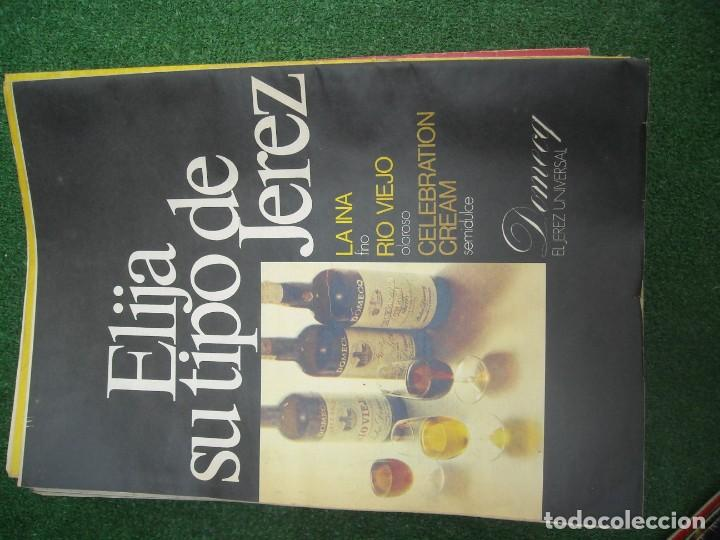 Tauromaquia: EL RUEDO SEMANARIO GRÁFICO DE LOS TOROS 73 EJEMPLARES AÑO 1962 1966 1967 1968 1970 1971 1972 1973 - Foto 123 - 167847784