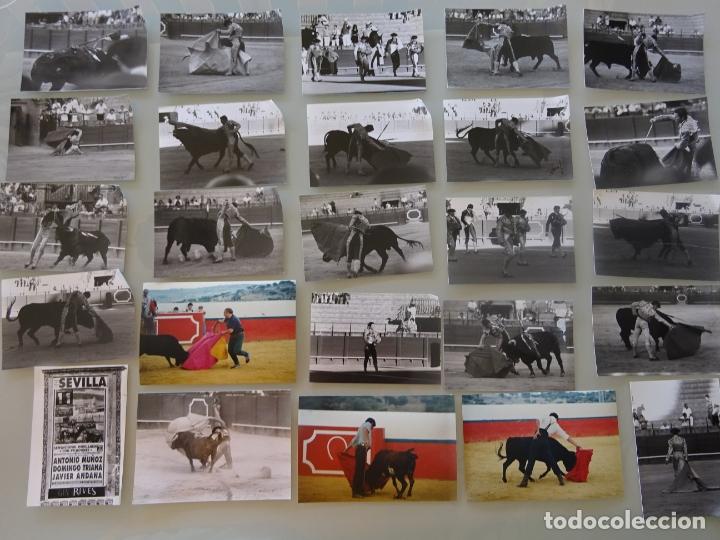Tauromaquia: LOTE MÁS DE 300 FOTOGRAFÍAS CORRIDAS TOROS MÁLAGA SEVILLA. TOREROS. CURRO ROMERO, JESULÍN, 1,58 KG - Foto 4 - 178864002