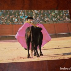 Tauromaquia: POSTAL JAIME OSTOS PLAZA DE PAMPLONA CITANDO CON LA CAPA. FOTO: BOTAN. BERGAS. SIN CIRCULAR 1.972. Lote 179025432