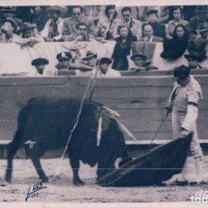 Tauromaquia: POSTAL FOTOGRAFICA DENITO ORTREGA - LUIS RODRIGUEZ FOTOGRAFO. Lote 180155798