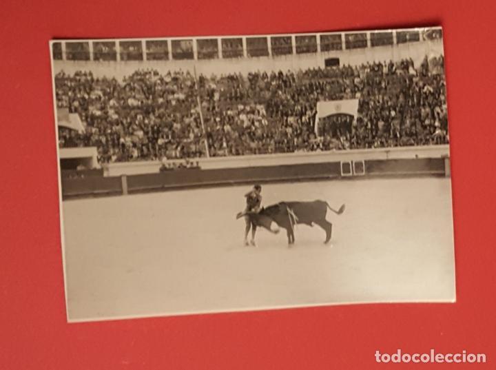 Tauromaquia: 6 fotografías antiguas: PLAZA de TOROS de MELILLA (1950's) ¡Originales! Coleccionista - Foto 2 - 186337941