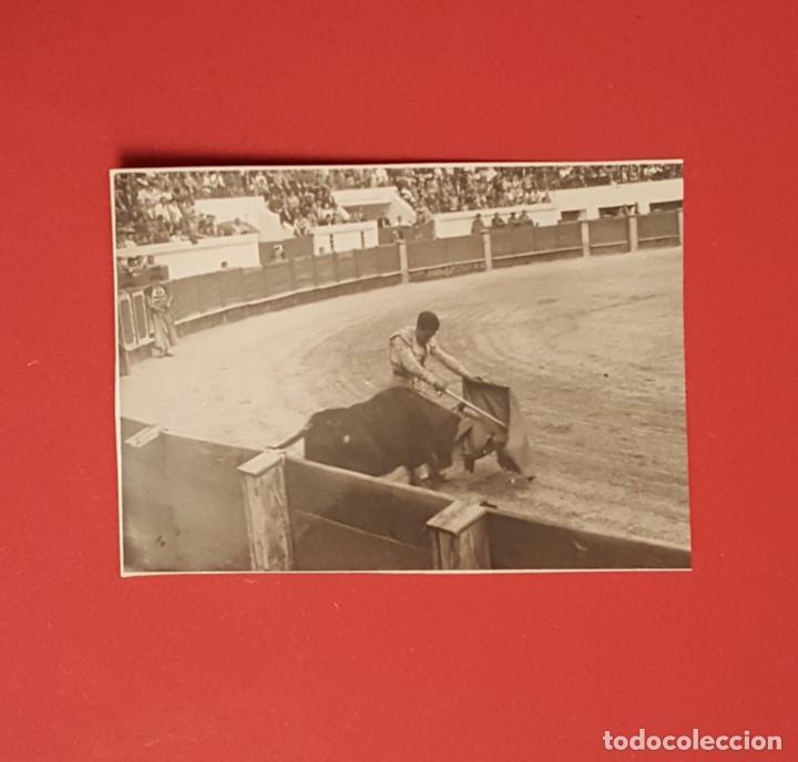Tauromaquia: 6 fotografías antiguas: PLAZA de TOROS de MELILLA (1950's) ¡Originales! Coleccionista - Foto 4 - 186337941