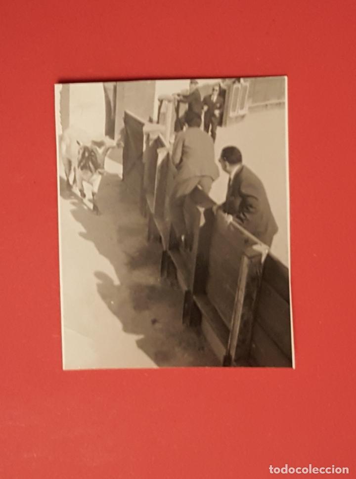 Tauromaquia: 6 fotografías antiguas: PLAZA de TOROS de MELILLA (1950's) ¡Originales! Coleccionista - Foto 7 - 186337941