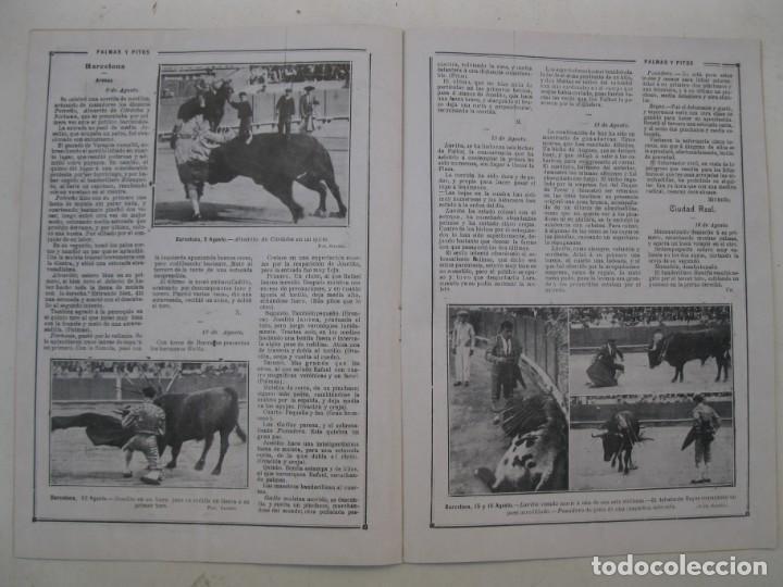 Tauromaquia: PALMAS Y PITOS - AÑO II - Nº 75 - EUSEBIO FUENTES - AGOSTO DE 1914. - Foto 3 - 195275768