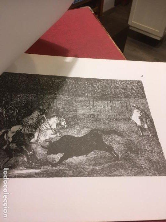 Tauromaquia: La tauromaquia homenaje a Goya dirigido por Antonio de Horna. 1815.1983. 49 x 36 cms. - Foto 8 - 195381705